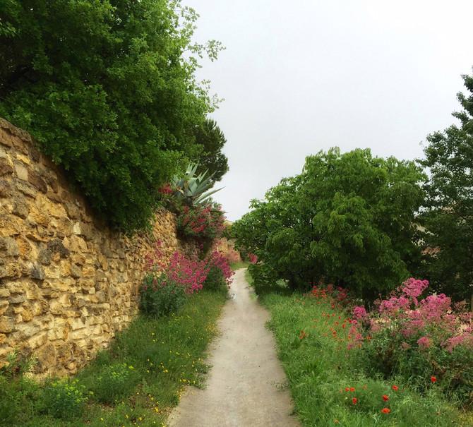 3. flânant en Provence