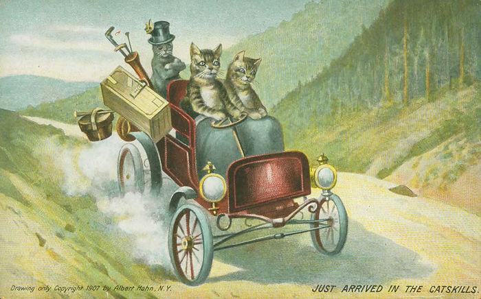 Postcard cats driving in catskills.jpg
