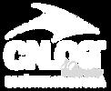 logo_branco_cnlog-02.png