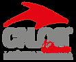 logo_cnlog_12anos.png