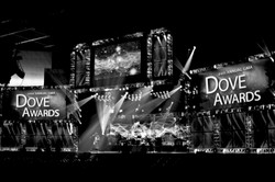 Doves 2013_1
