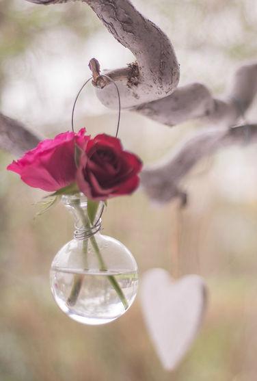 14th-celebrate-day-of-love-47396-2.jpg
