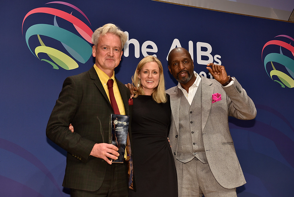 The AIBs Awards Winners Art and Culture
