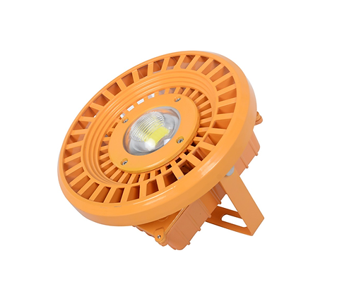 LED Flood Light FB-30