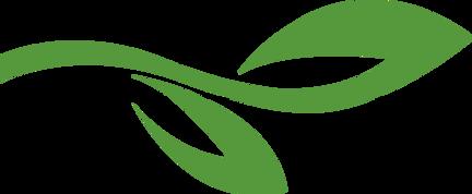 Leaf animated graphc