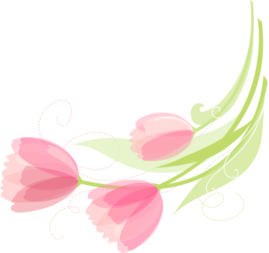 drawn pink tulip graphic