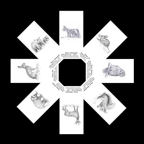 Lot de 4 marque-pages animaliers