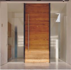 Single Modern Door