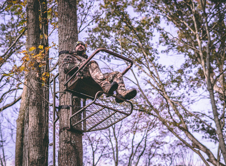 Perfect Tree Stand Placement