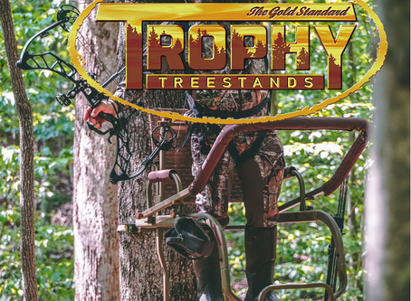 Which tree stand is right for you and your property?