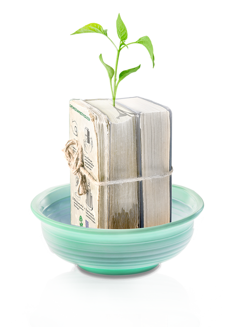 Bookplant+giveaway+-+montage.png