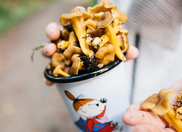 Chef's Sample Mushrooms