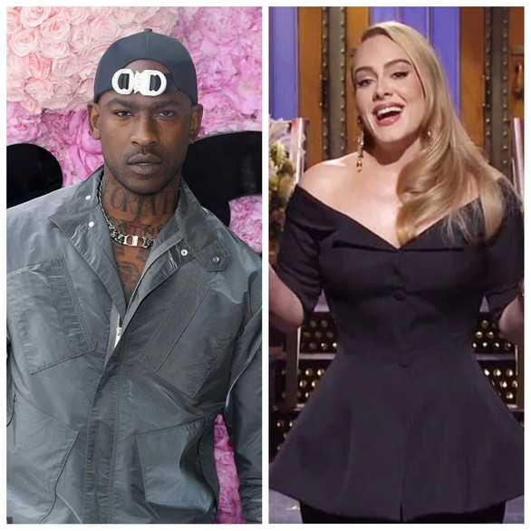 Adele says she's a 'single cat lady' after Skepta romance rumours