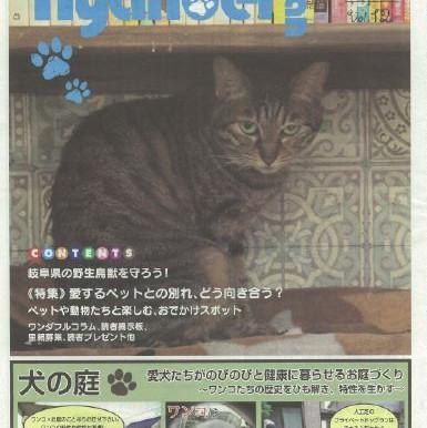 情報誌 ニャンバーワンVOL12 発行されました。