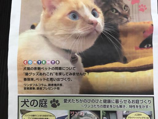 情報誌 ニャンバーワン Vol.14