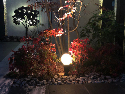 ライトアップでお庭を素敵に! 雰囲気が変わります。