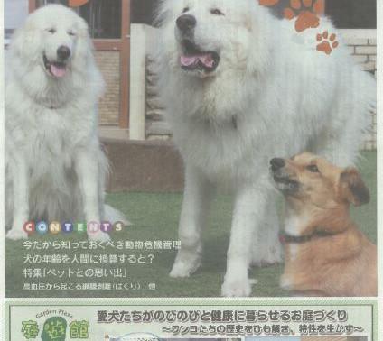 岐阜新聞情報誌 ニャンバーワン 庭遊館看板犬 表紙を飾る!