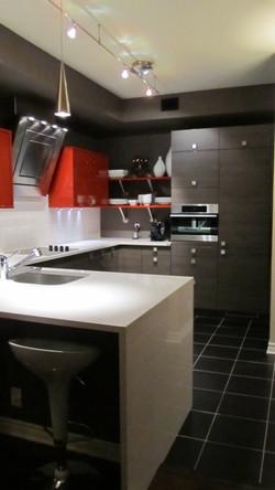 Bold, Modern Condo Kitchen