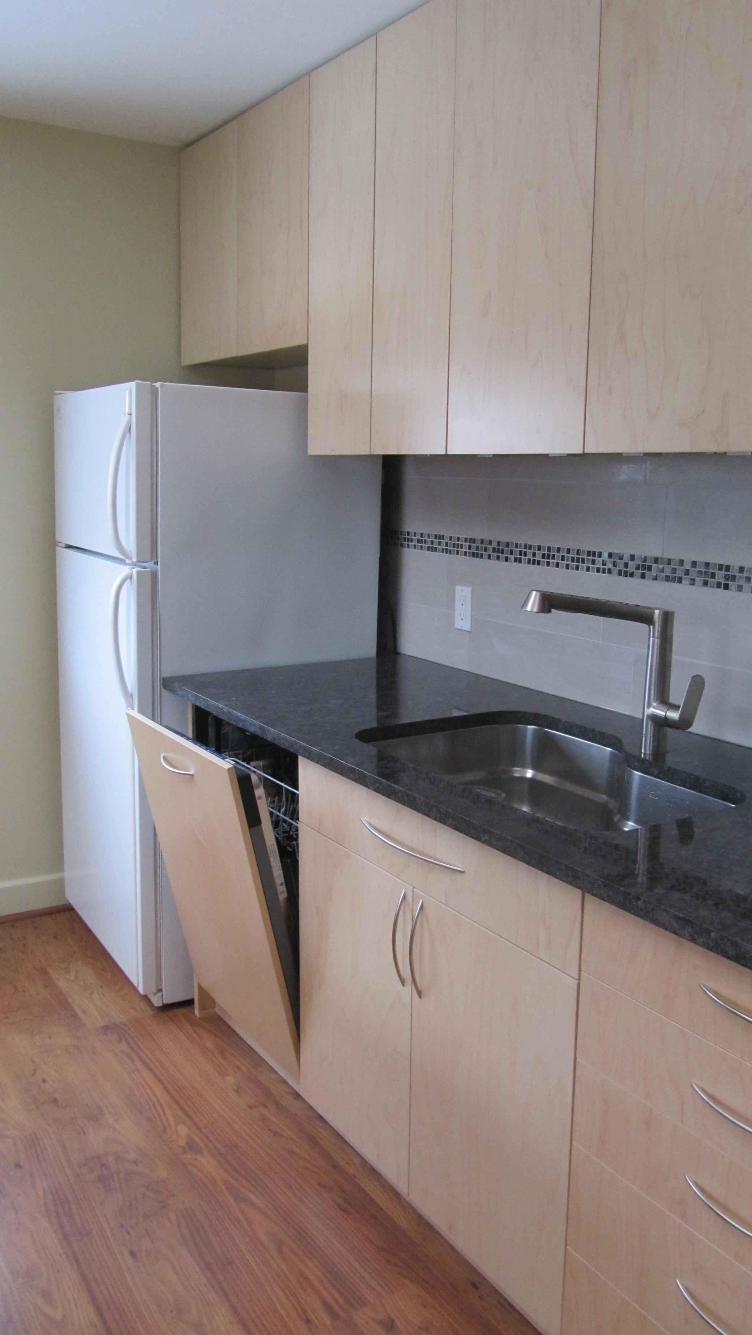 Concealed Dishwasher + Large Sink