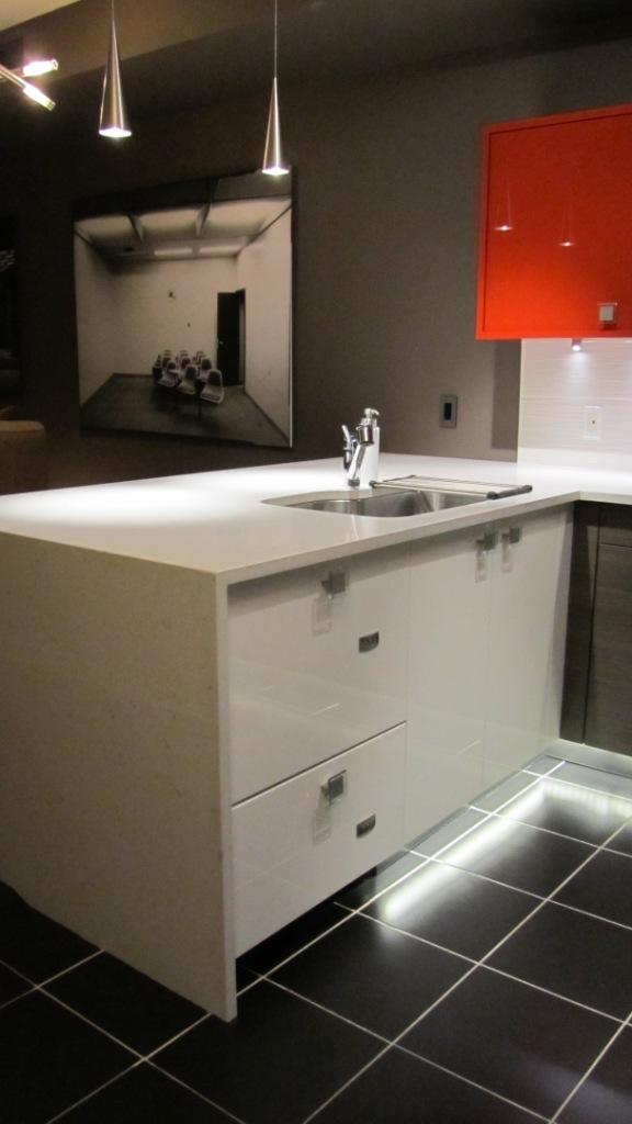 Integrated Paneled Dishwasher