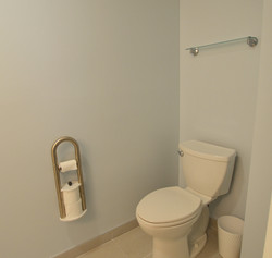 Toilet with Assist Roll Holder