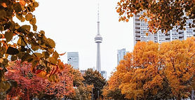 Toronto in Oct.jpg