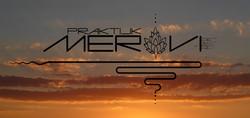 Meravi - Business Logo