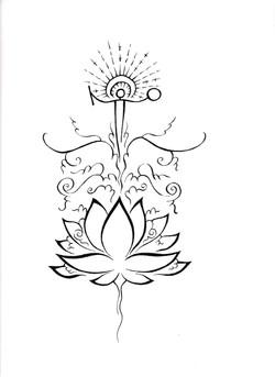 Lotus Born