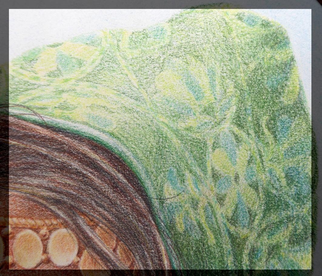 Portret Gaia - detail