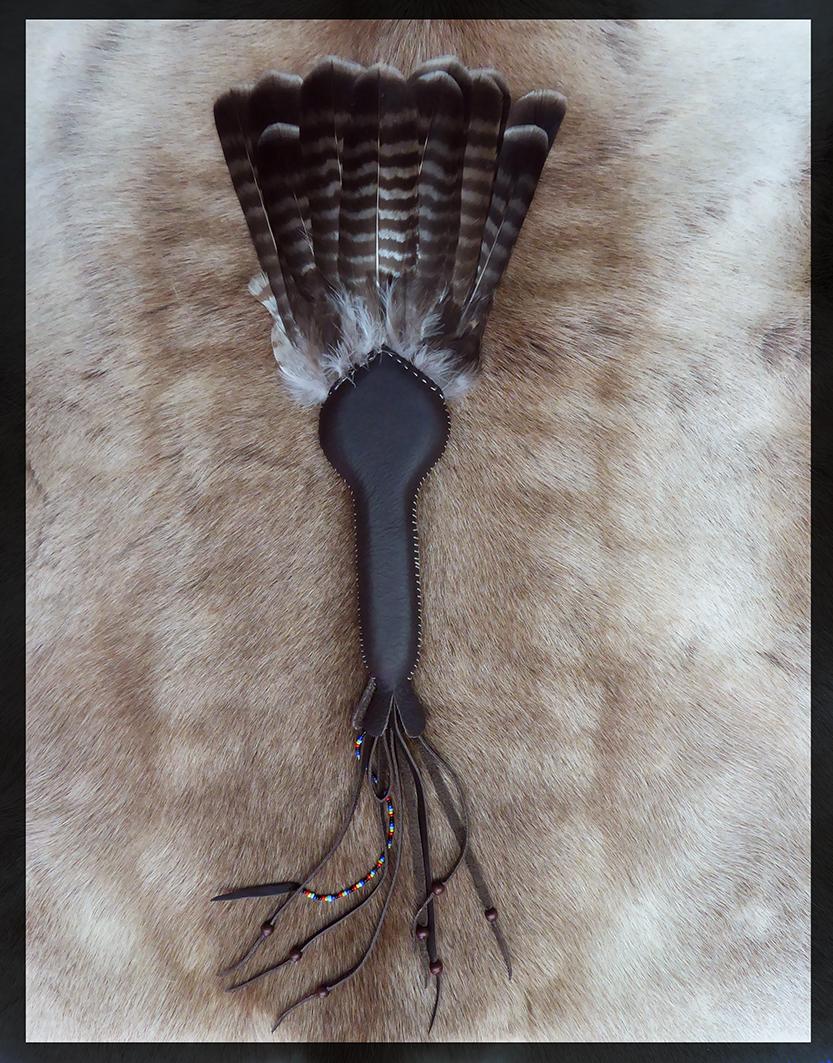 Tail fan - Buzzard