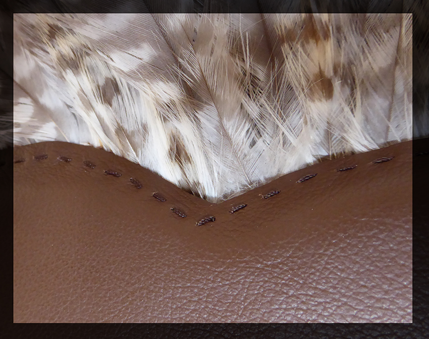 Full wing fan - Buzzard