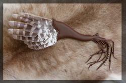 Wing fan - Tawny Owl
