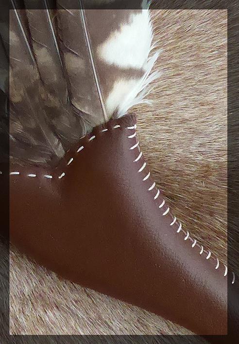 Bosuil - Tawny Owl #2
