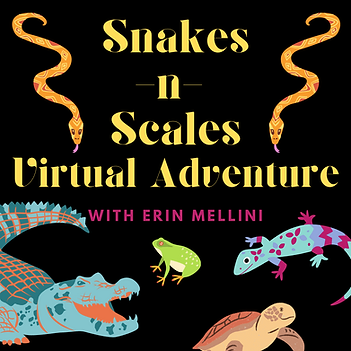 snakes n scales insta.png