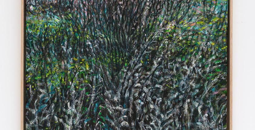 Frosty Fields (Rehberg)