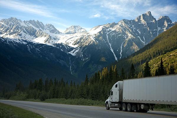 white-dump-truck-near-pine-tress-during-