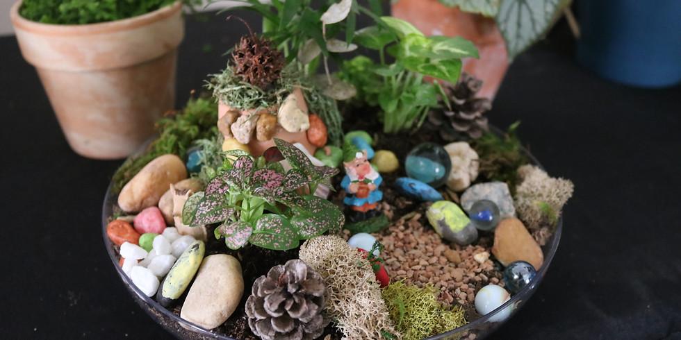Miniature Fairy Dish Garden - Kids Workshop