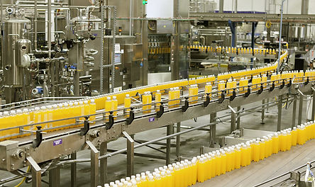 Food Processing case