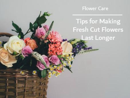 Fresh Flower Tips
