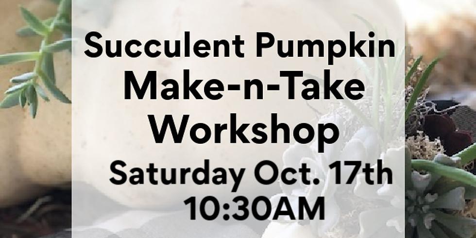 Succulent Pumpkin - Make-N-Take Oct 17th