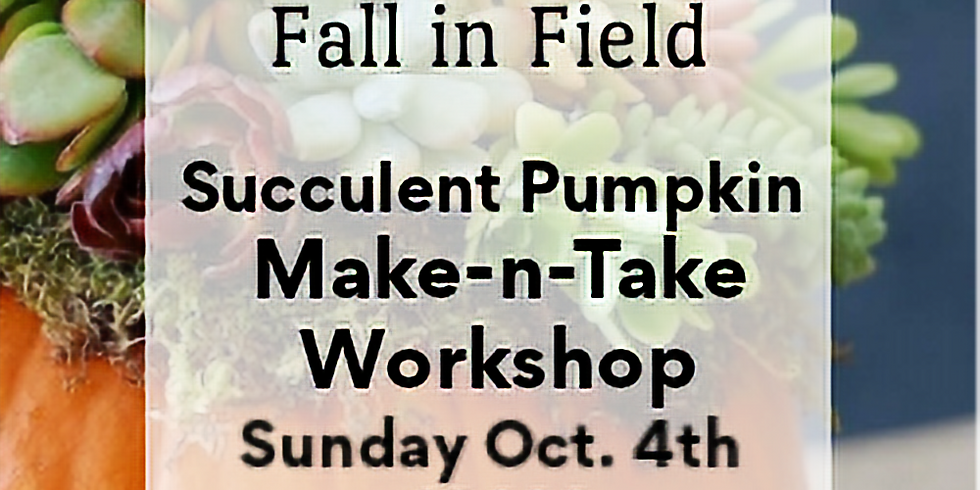 Succulent Pumpkin - Make-N-Take Oct 4th