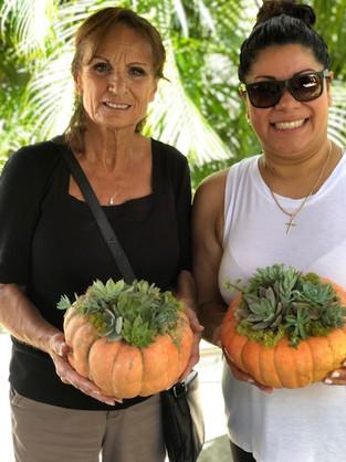 Succulent pumpkins workshop
