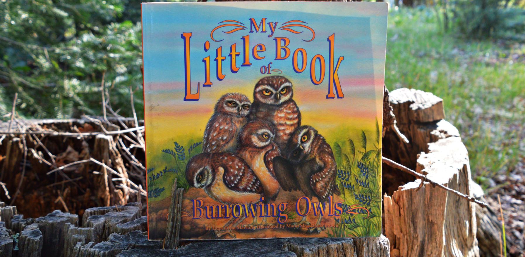LETMN Reads My Little Book of Burrowing Owls!