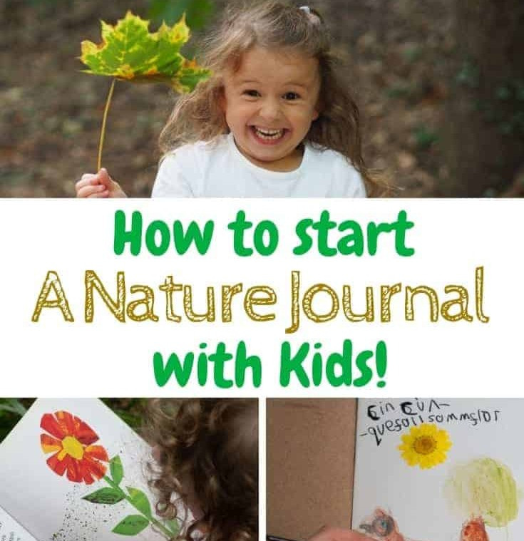 Tips for starting a nature journal