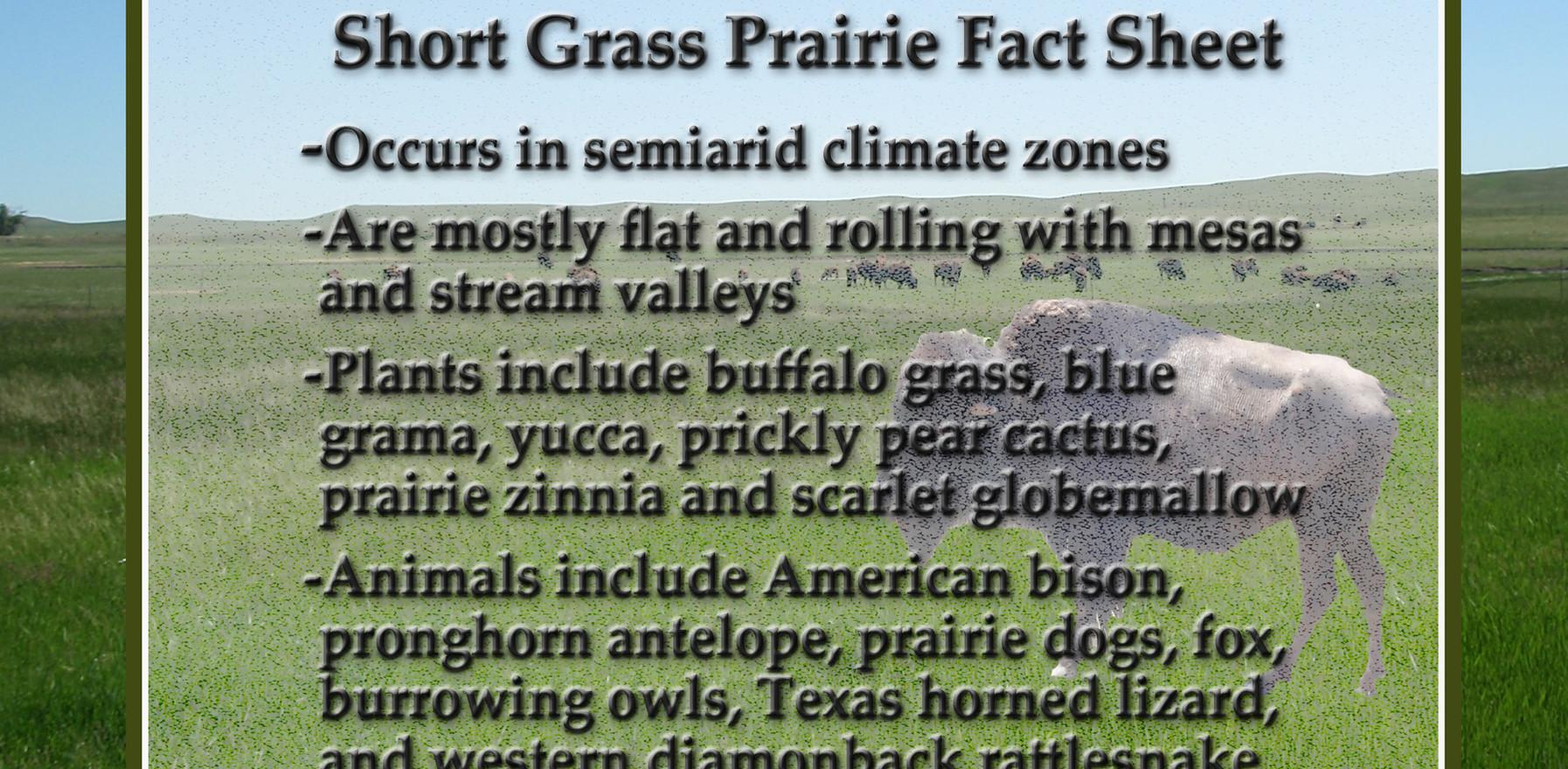 Short Grass Prairie Fact Sheet