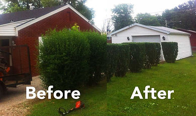 A & K Services of Iowa - Shrub Shearing and Pruning