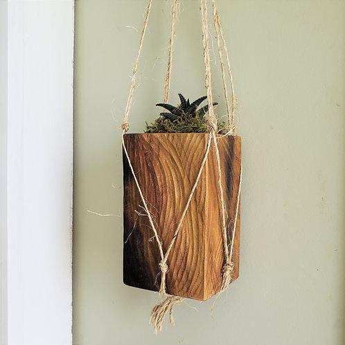Hanging Succulent Planter, Poplar