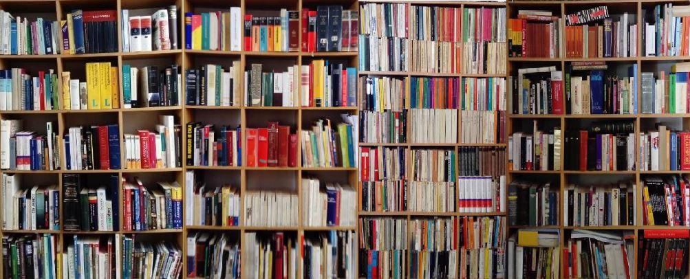 Terminologías específcas del diccionario Salízites