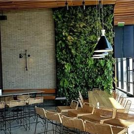 WG_Jardim_Vertical_tem_soluções_paisag