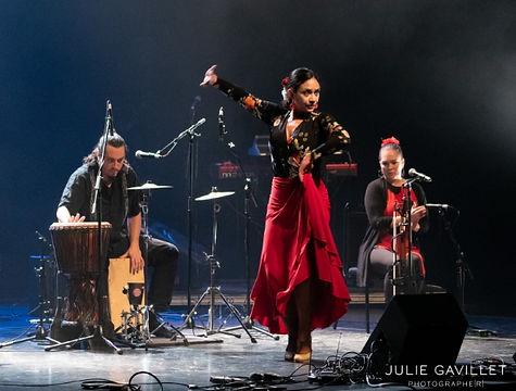 Métissage_-_Impulso_Flamenco_-_Sergio_Ba
